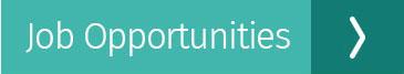 job-opportunities-btn
